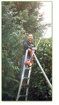 Tree Care and Services